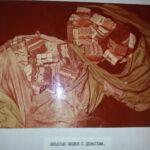 Кража на Коммунаре, Запорожье